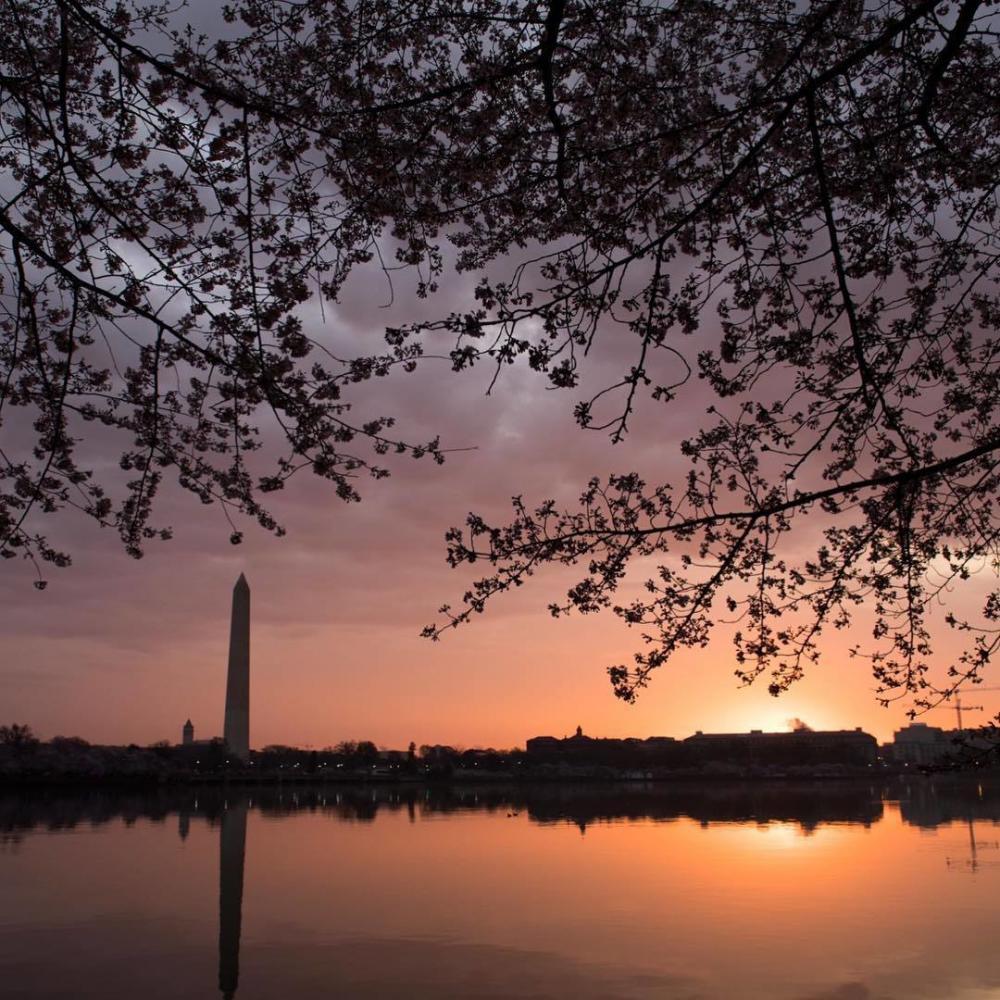 Etats-Unis : Washington au lever de soleil