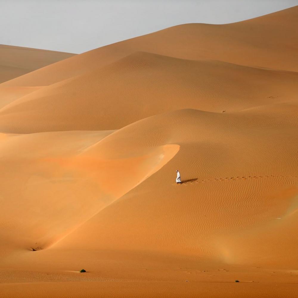 Émirats arabes unis : désert Rimah